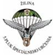 5. Regiment of Special Designation Žilina